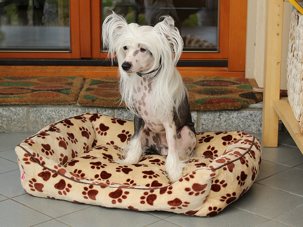 Pelíšek pro psy od For My Dogs