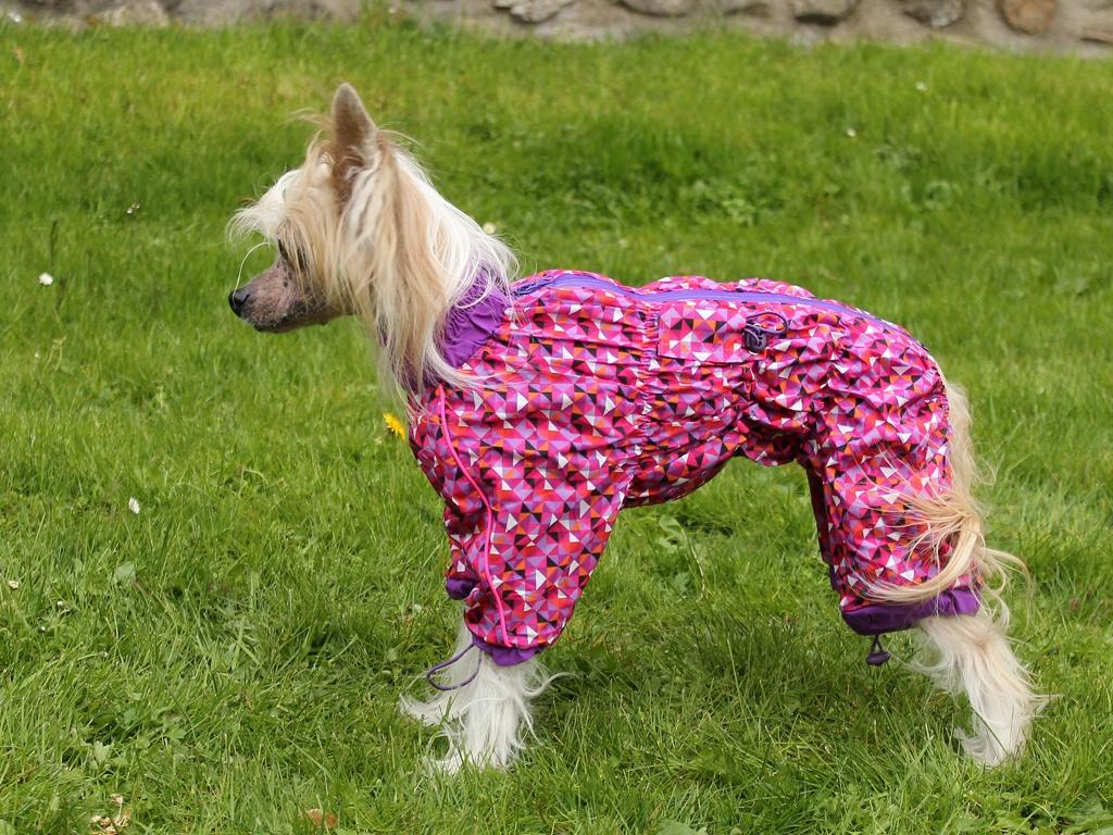 Oblečky pro psy FMD – Pláštěnka pro fenky For My Dogs