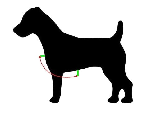 Autopostroj pro psy – měření hrudníku
