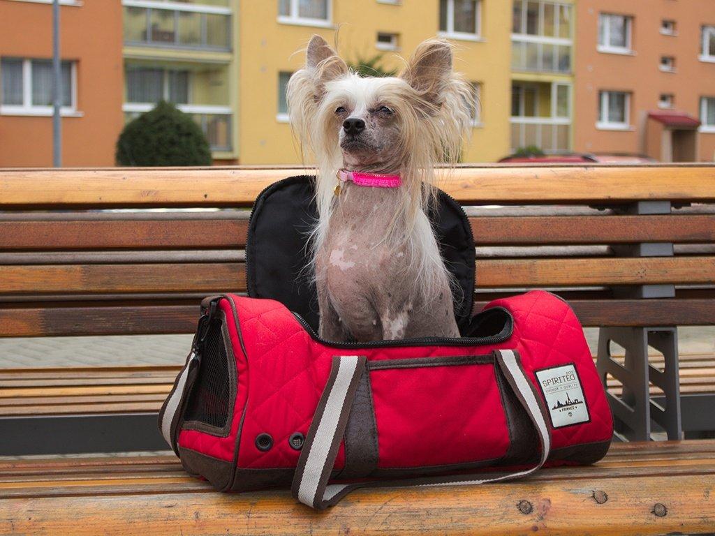 Sportovní taška na psa BOBBY