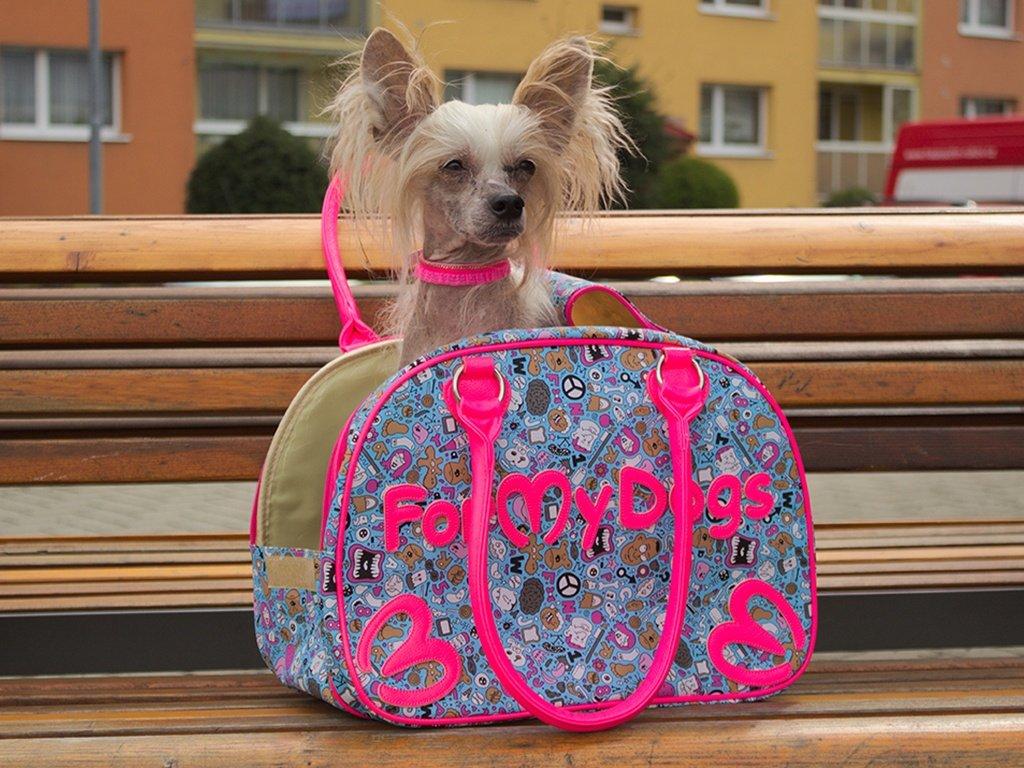 Čínský chocholatý pes v luxusní barevné tašce na psy od FMD