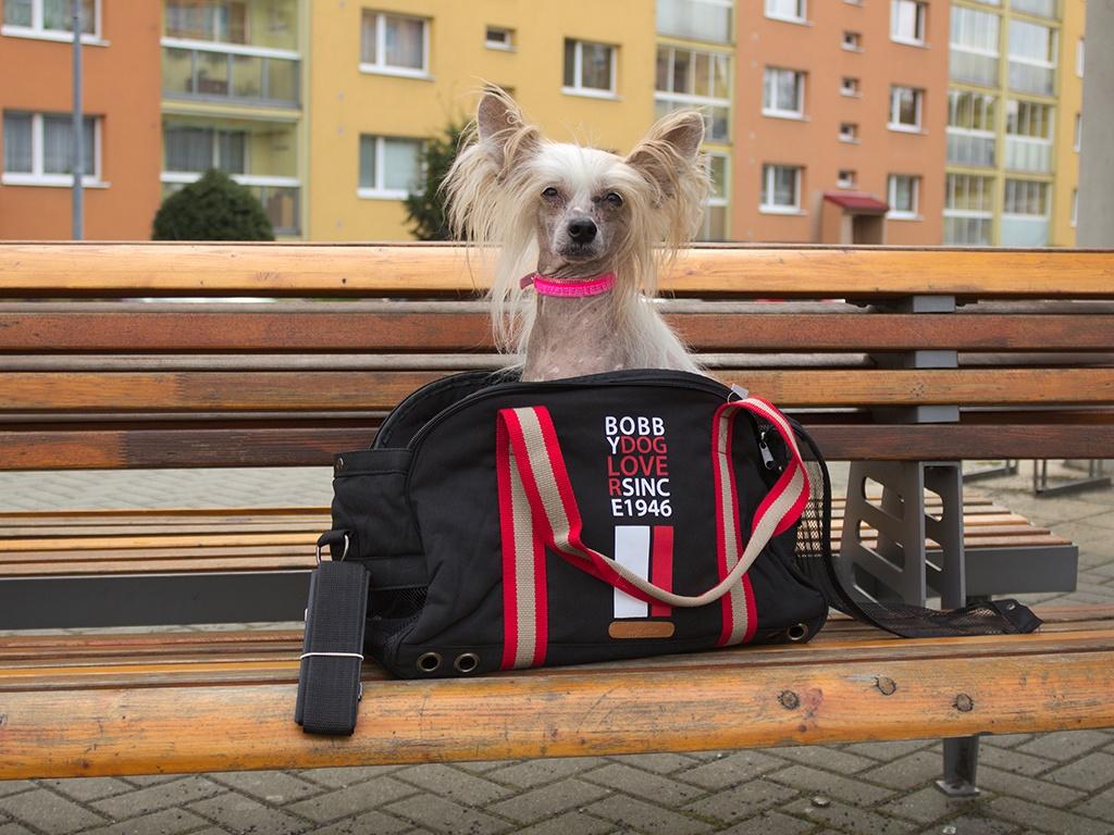 Sportovní taška na psy