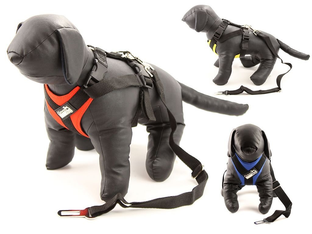 Bezpečnostní postroj pro psy – autopás