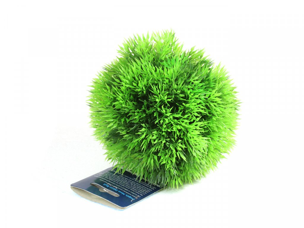 rostlina small moss ball 14