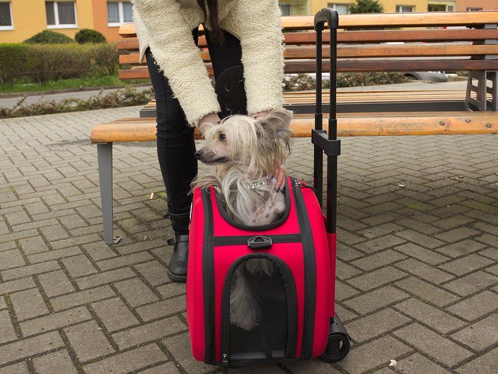 f0f13c11ab ... Taška pro psy na kolečkách – červená (2) ...