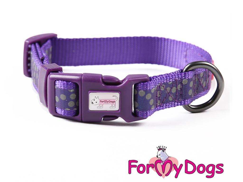 Obojky pro psy – fialový puntíkovaný obojek z kolekce ForMyDogs PURPLE DOTS