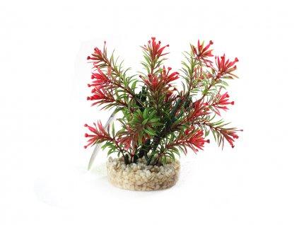sydeco rostlina do akvaria 3