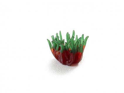 sydeco rostlina do akvaria 6