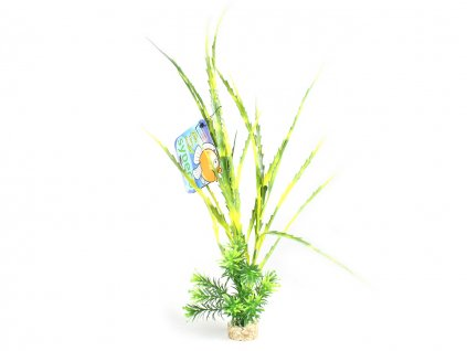 sydeco rostlina do akvaria l8
