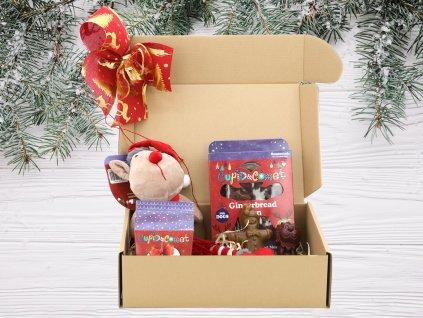 vanocni box pro psy special edice