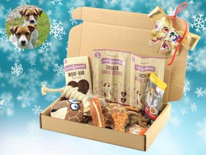 Dárek pro psy k Vánocům – box hraček a pamlsků
