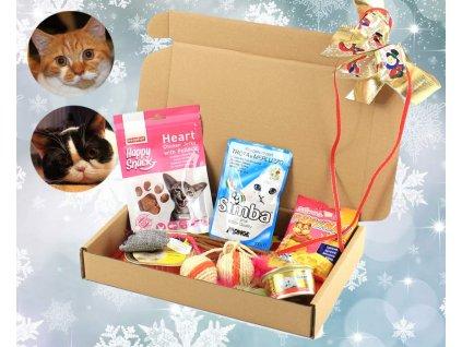 Vánoční dárek pro kočky – box hraček a pochoutek