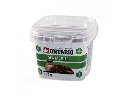Pamlsky pro kočky Ontario Snack Dental Bits 75g