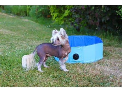 Bazén pro psy – malý