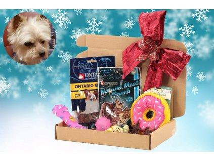 Dárek k Vánocům pro malé psy – krabice pamlsků + hračky