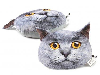 Polštář s potiskem – britská krátkosrstá kočka