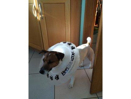 Nafukovací ochranný límec pro psy i kočky 20-30 cm