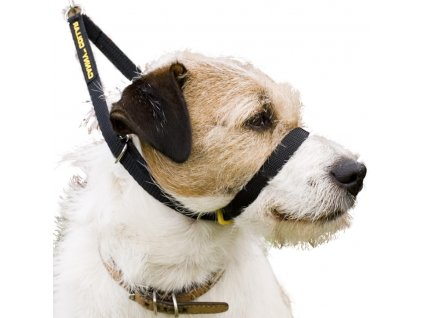 Výcvikový obojek pro psy Canny Collar – velikost 4