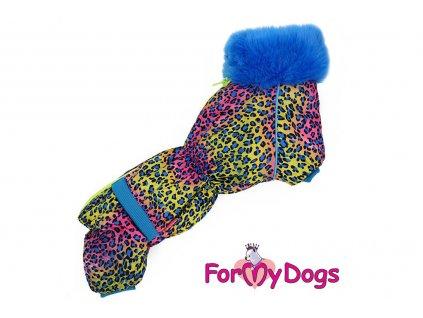 Obleček pro psy jezevčíků – teplý zimní overal LEO BLUE od ForMyDogs z voduodpudivého materiálu. Zapínání na zádech, kožešinová podšívka, vyšší límec.