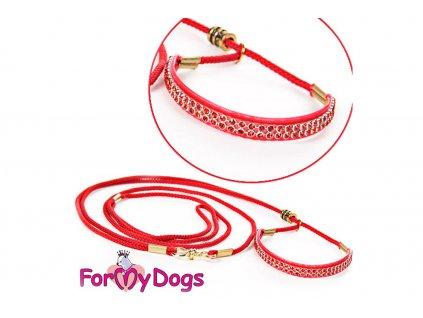 Výstavní vodítko pro psy FMD red red