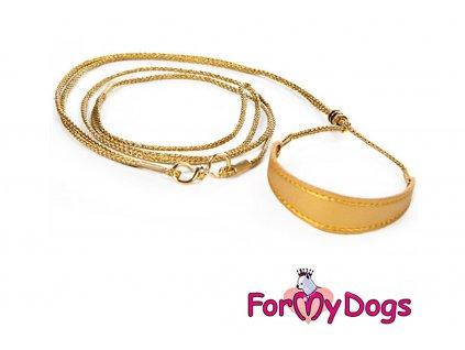Výstavní vodítko pro psy FMD gold