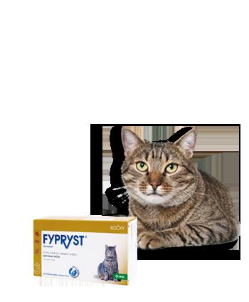 FYPRYST spot-on pro kočky 1x0.5 ml