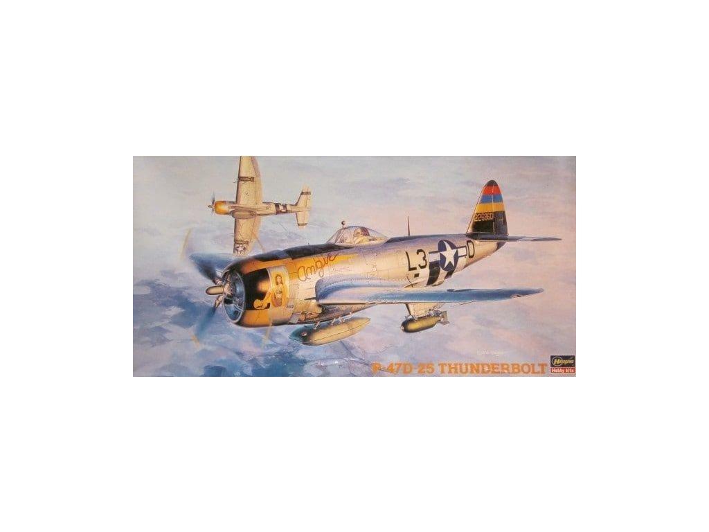 P 47D 25 Thunderbolt 1 48