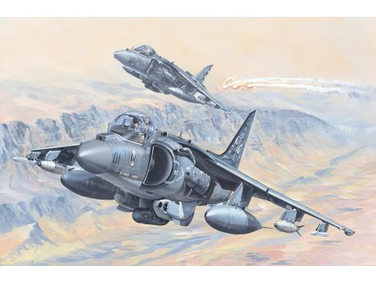 AV 8B Harrier II 81804