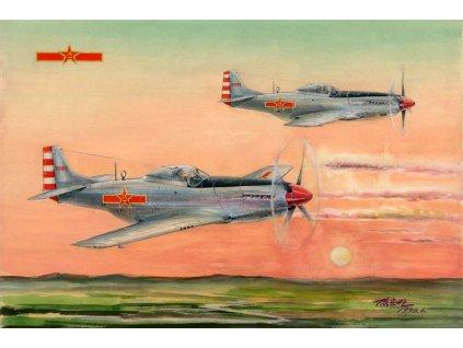 1/48 PLAAF P-51D/K Mustang