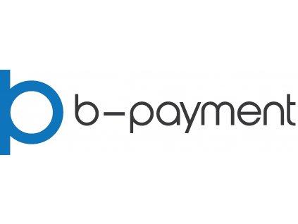 Logo B payment