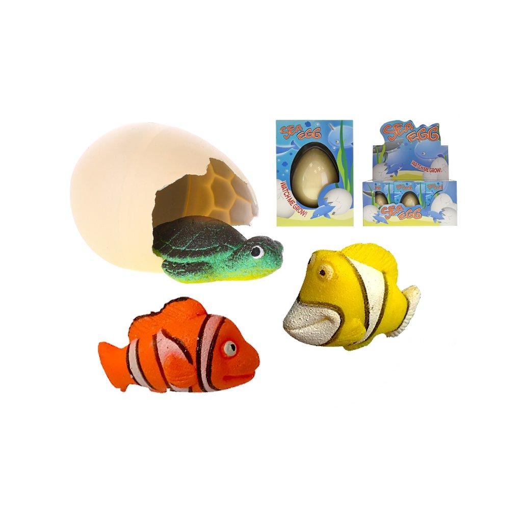 Liahnuce a rastúce morské zvieratka 6 druhov v krabičke 12ks v DBX