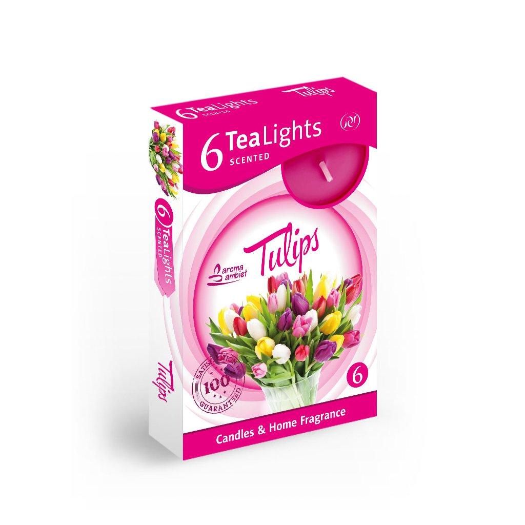 Vonne cajové sviecky 6ks tulipán