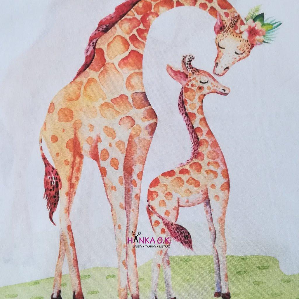 Panel úplet žirafy 42x50cm