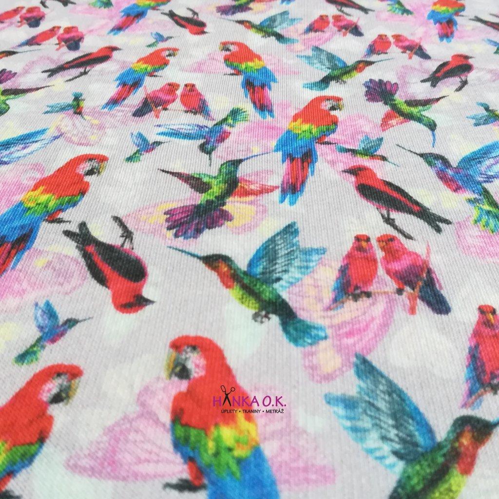 Teplákovina počesaná 290g papoušci