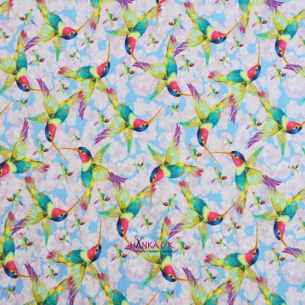 Teplákovina počesaná 290g kolibříci