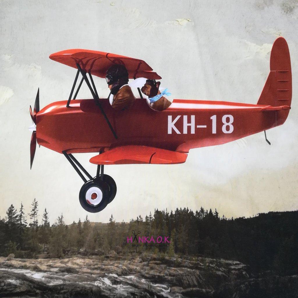 Panel úplet bavlna pilot a pes buldoček - na celé tričko 100x150cm