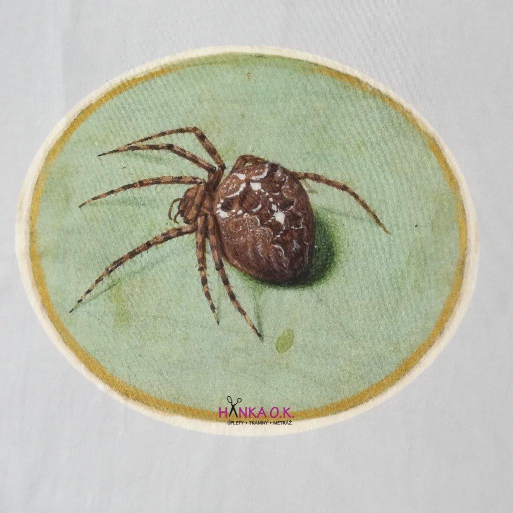 Panel úplet bavlna pavouk - na celé tričko 100x150cm