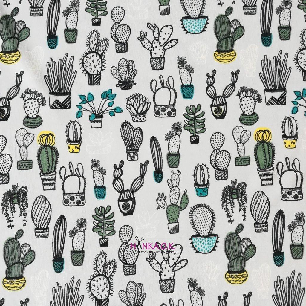 Úplet kaktusy na šedé