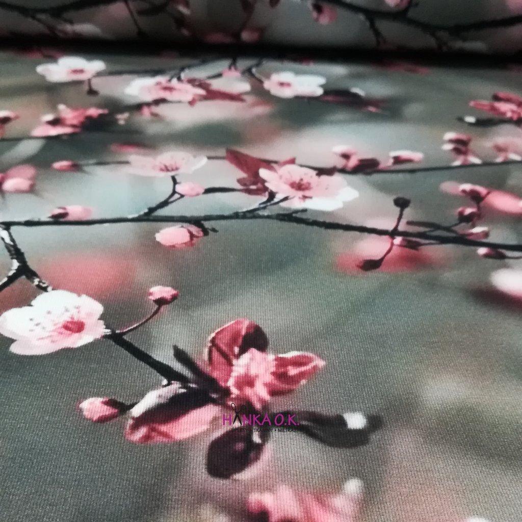 Teplákovina nepočesaná digitisk větvičky v květu 240g