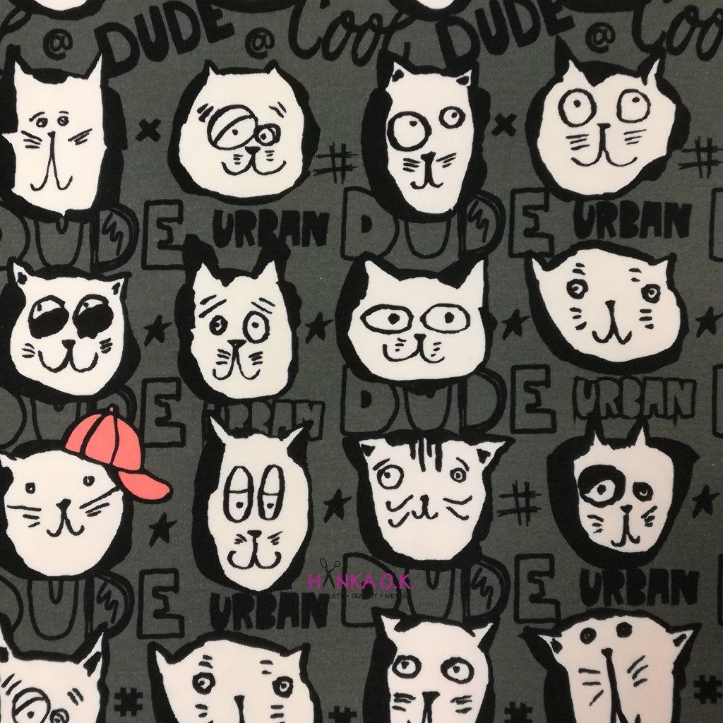 Teplákovina nepočesaná digitisk kočky a nápisy na šedozelené 240g
