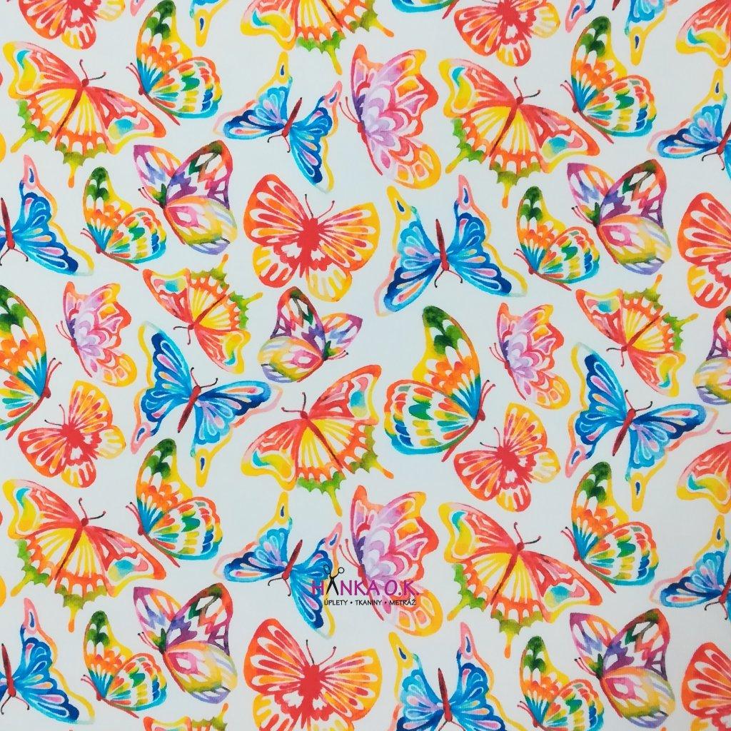 Teplákovina nepočesaná barevní motýli na bílé 240g