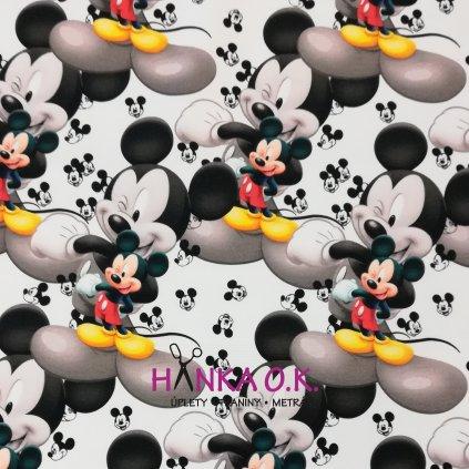 Teplákovina nepočesaná Mickey 240g