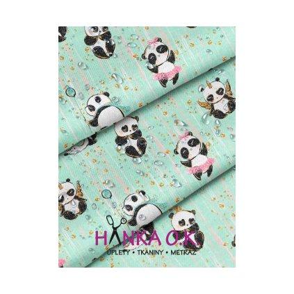 Softshell zimní pandy na bledě modré