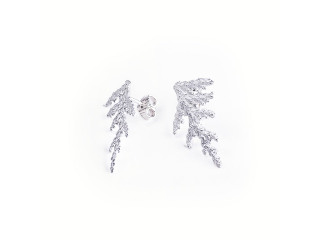 5earrings Thuja foliage