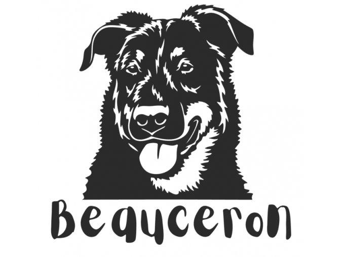 bauceron