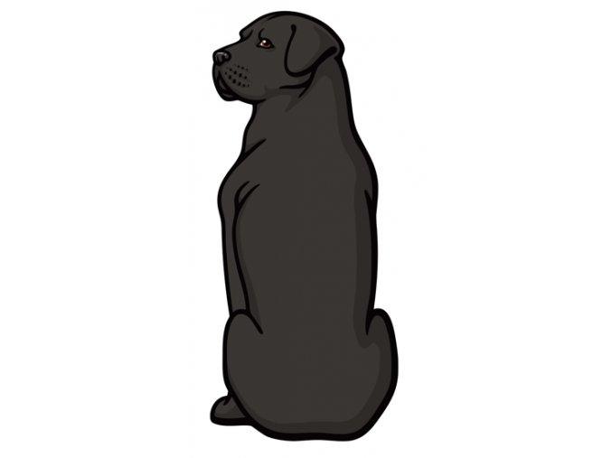 Cane Corso, samolepka cane corso, nálepka cane corso černý