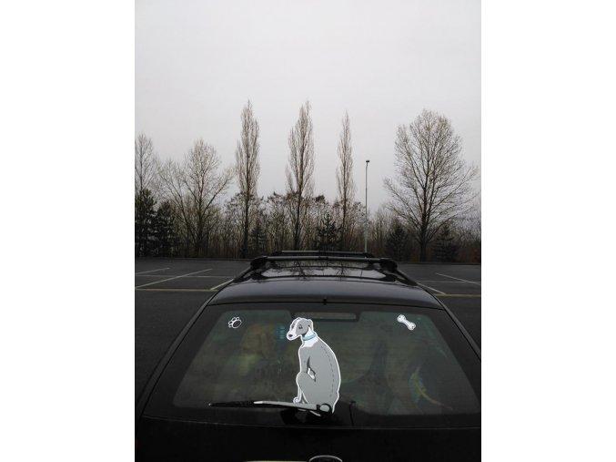 VIPET šedý