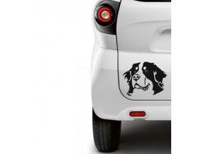 Bernský salašnický pes samolepka na auto