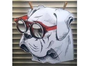 německý boxer brýle