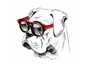 boxer brýle